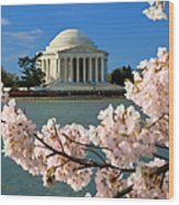 Jefferson Memorial Cherry Trees Wood Print