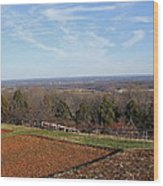 Jefferson's View From Monticello Wood Print