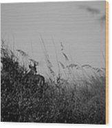 Jekyll Deer In Black Wood Print