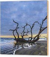Jekyll Island Seascape Wood Print