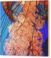 Jelly Atlanta Aquarium Ga Wood Print