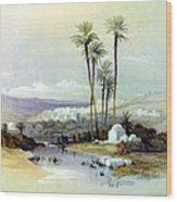 Jenin Ancient Jezreel 1839 Wood Print