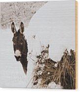 Jenny Wood Print by Cheryl Helms