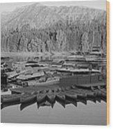 Jenny Lake Wyoming   Wood Print