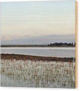 Jepson Prairie Vernal Pools Wood Print