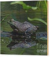 Jeremiah Was A Bullfrog Wood Print