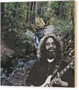 Jerry's Mountain Music 13 Wood Print