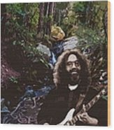 Jerry's Mountain Music 9 Wood Print
