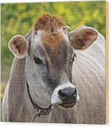 Jersey Cow With Attitude - Square Wood Print