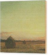 Jersey Meadows Wood Print
