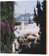 Jerusalem Beautiful Wood Print