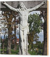 Jesus Christ Crucified Wood Print