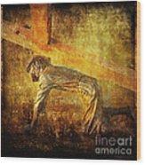 Jesus Falls Again Via Dolorosa 7 Wood Print