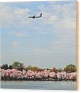 Jet Blue Airlines Wood Print