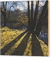 Jewel In The Trees Wood Print by Debra and Dave Vanderlaan