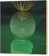 Jeweled Astrophytum  Wood Print