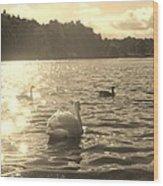 Jewels Of The Lake Wood Print