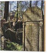 Jewish Cemetery Wood Print by Brenda Kean