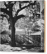 Jfk-the Stockade Fence-dealy Plaza Wood Print