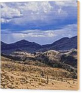 John Day Fossil Beds Nations Monuments Wood Print by Shiela Kowing