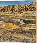 John Day Oregon Landscape Wood Print
