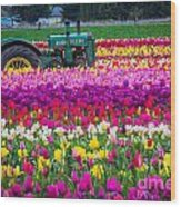 John Deere In Spring Wood Print