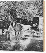 Johnston Horse Wagon Wood Print