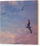 Jonathan Fly Free Wood Print