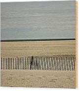Jones Beach Wood Print