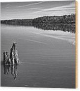 Jordan Lake Reflections II Wood Print