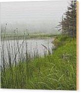 Jordan Pond In Acadia National Park Wood Print