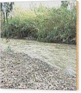 Jordan River After The Rains Wood Print by Rita Adams
