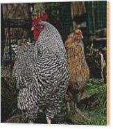 Jos Rooster Wood Print