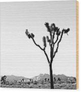 Joshua Tree No. 02 Wood Print