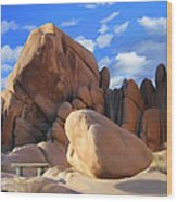 Joshua Tree Anomoly Wood Print