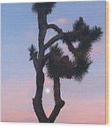 Joshua Tree Full Moon  Wood Print