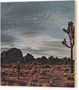 Joshua Tree Hidden Valley Panorama Wood Print