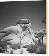 Joshua Tree Holga 6 Wood Print