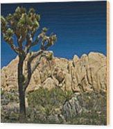 Joshua Tree In Joshua Tree National Park No. 323 Wood Print