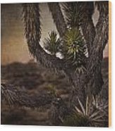 Joshua Tree In Mojave National Preserve Wood Print