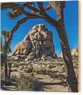 Joshua Tree Jumbo Rocks Wood Print