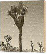 Joshua Tree National Park - Old Vintage Sepia Wood Print