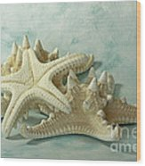 Journey To The Sea Starfish Wood Print