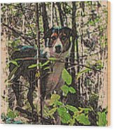 Joy Boy Wood Print