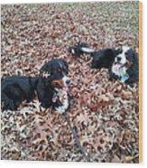 Joy Of Leaves Wood Print