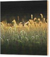 Joy Of Summer - Version 2 Wood Print