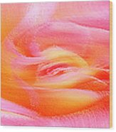 Joy - Rose Wood Print