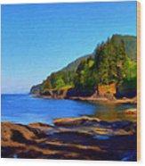 Juan De Fuca Shoreline Wood Print