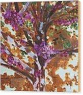 Judas Tree Jerusalem Wood Print