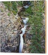 Judd Falls Wood Print